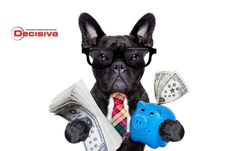 Gestão financeira - Como realizar para o meu pet shop?