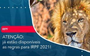 Ja Estao Disponiveis As Regras Para Irpf 2021 - Contabilidade em São Paulo | Decisiva Assessoria e Consultória Contábil